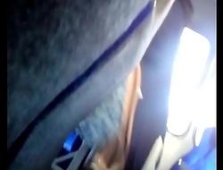 Mostrando la verga a chica en el bus